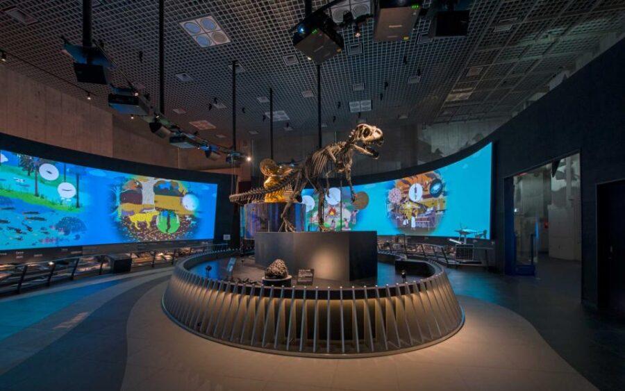 国立科学博物館 地球館Ⅰ期(北側)リニューアル